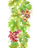 Repeating border stripe with grape and  leaves. Watercolor frame Royalty Free Stock Images