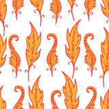 Repeating floral and feather pattern. Seamless texture. Stock Photos