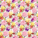 Repeating floral pattern. Peonies flowers, irises and butterflies. Watercolour. Seamless floral pattern. Peonies pink flowers and irises. Watercolor Stock Image