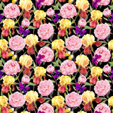Repeating floral pattern. Peony flowers, irises and butterflies. Watercolor on black background. Seamless floral pattern. Peonies pink flowers and irises Royalty Free Stock Photos