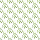 Repeating outlines of green leaves on a white background. Organic seamless pattern. Stock Image
