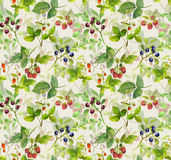 Repeating pattern with berries. Watercolor Stock Photo