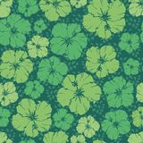 Repeating pattern of  hibiscus flower. Green floral repeating pattern of a hibiscus flower royalty free illustration