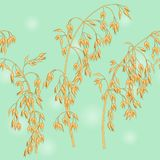 Oats ears pattern. Repeating pattern with oats ears Royalty Free Stock Images