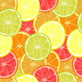 Repeating seamless pattern of different citruses. Stock Image