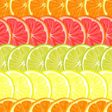 Repeating seamless pattern of different citruses. Stock Photos