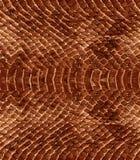 Repetição da textura do teste padrão da pele de serpente sem emenda Vetor Serpente da textura ilustração royalty free
