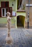 Repgata från Brasov Rumänien efter renovering Statysikt från fullvuxen hankronhjortgatan arkivfoton
