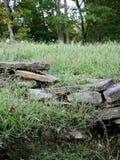 Repisa de la roca Foto de archivo