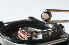 Replace the battery in a wristwatch. Close-up Of Tweezers Placing Battery On Wrist Watch Stock Image