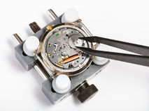 Replacement battery in quartz watch with tweezers. Watchmaker workshop - replacement battery in quartz watch with tweezers close up on white background Royalty Free Stock Images