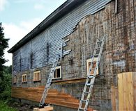 Replacing the old, gray siding of old wooden barn with new brown tan siding. Working on sode of barn, ladders five wimdows , exchanging old soding with new stock image