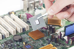 Replacing processor. Replacement of damaged processor on the motherboard stock image