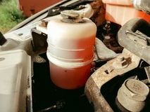 Replacing vehicle red power steering fluid royalty free stock photos