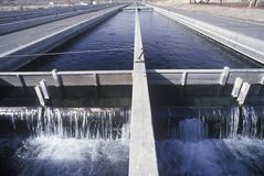 Replenishing lakes at the Fish Springs Hatchery, North of Lone Pine, CA Royalty Free Stock Photo
