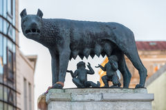 Replica of the Capitoline Wolf in Bucharest, Romania Stock Photography