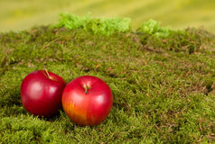 Replik jabłka na bajki tle Fotografia Royalty Free