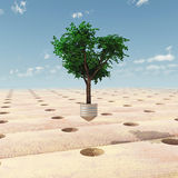 Repoblación forestal libre illustration