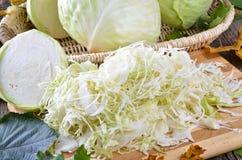 Repolho branco Fotografia de Stock