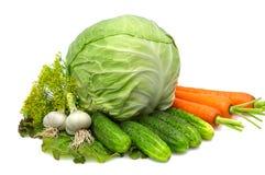 Repolho, cenoura, alho, pepinos, aneto, alface. Imagens de Stock Royalty Free