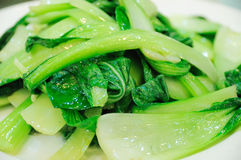 Repolho chinês da culinária fotografia de stock royalty free