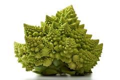Repolho dos bróculos de Romanesco isolado Foto de Stock