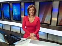 Reporter della TV immagine stock libera da diritti