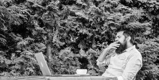 Reportera dziennikarza dzienna rutyna Pracuj?cy online Online ?rodki masowego przekazu pracownik Pisze artykule dla online magazy obrazy stock