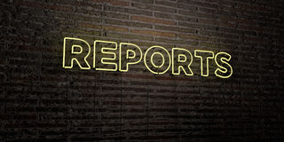 REPORTS -Realistic Neon Sign on Brick Wall background - 3D rendered royalty free stock image. Can be used for online banner ads and direct mailers Royalty Free Stock Photos