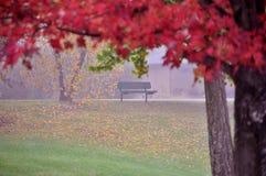 Repos d'automne Photo stock