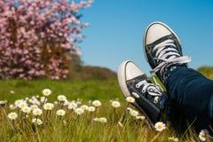 Repos dans un domaine de printemps Photo stock