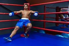 Repos de boxeur Images stock