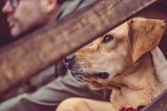 Repos de chien et de randonneur Image libre de droits