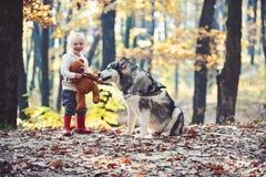 Repos et activit? actifs d'enfant sur l'air frais ext?rieur Jeu actif de fille avec le chien dans la for?t d'automne photos libres de droits