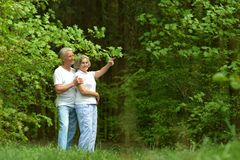 Repos plus âgé de couples sur la nature Images libres de droits