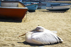 Repos près des bateaux Photo libre de droits