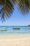 Repos sous le palmier dans le paradis Photographie stock libre de droits