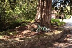 repos vert de vélo photographie stock libre de droits
