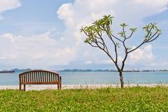 Reposez le banc et l'arbre à la trame convenable de rivage Image libre de droits