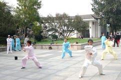 représentation de taiji Image libre de droits