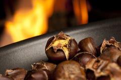 Repreensão orgânica das castanhas de Brown imagens de stock