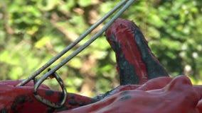 Repreensão Paprika On Barbecue vermelha 05 filme