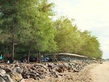 Represa da rocha da costa na praia Fotografia de Stock Royalty Free