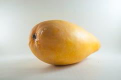Representação do fruto da manga suculenta fotografia de stock royalty free