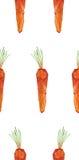 Representación aislada zanahoria geométrica inconsútil Fotografía de archivo