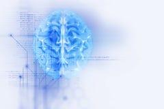 representación 3d del cerebro humano en fondo de la tecnología ilustración del vector