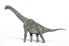 Representación fotorrealista de 3 D de un Brachiosaurus. Foto de archivo libre de regalías