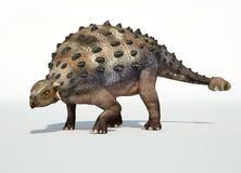 Representación fotorrealista de 3 D de un Ankylosaurus. Fotografía de archivo libre de regalías