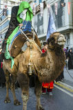 Representation on the camels to revive Karbala. Istanbul, Turkey - October 11, 2016: Representation on the camels to revive Karbala in the seventh century takes Stock Photos