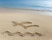 Represente em gaivotas de voo da areia dois Fotografia de Stock Royalty Free